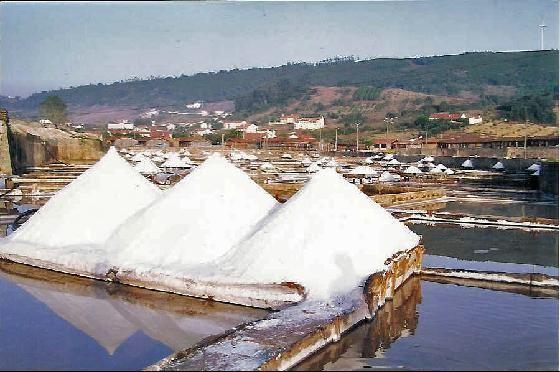zoutvelden Rio Maior