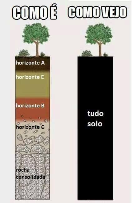 Horizontes Do Solo Agro Science Nature Pinterest Horizontes