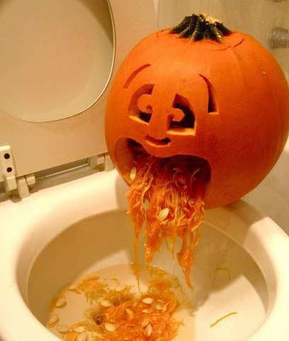 drunken pumpkin getting sick crazy stuff pinterest