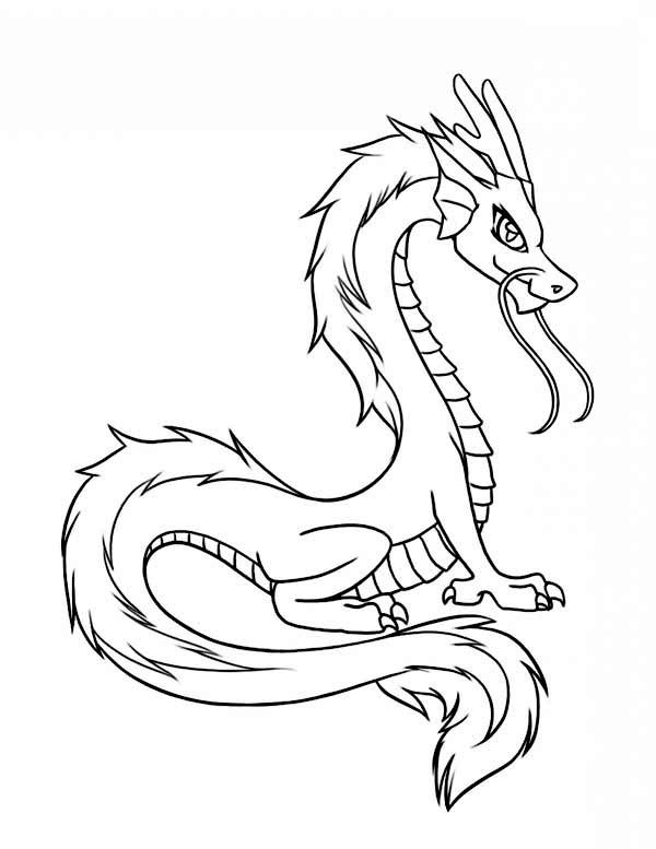 Dragon Chinese Illustration In Cartoon Coloring Page