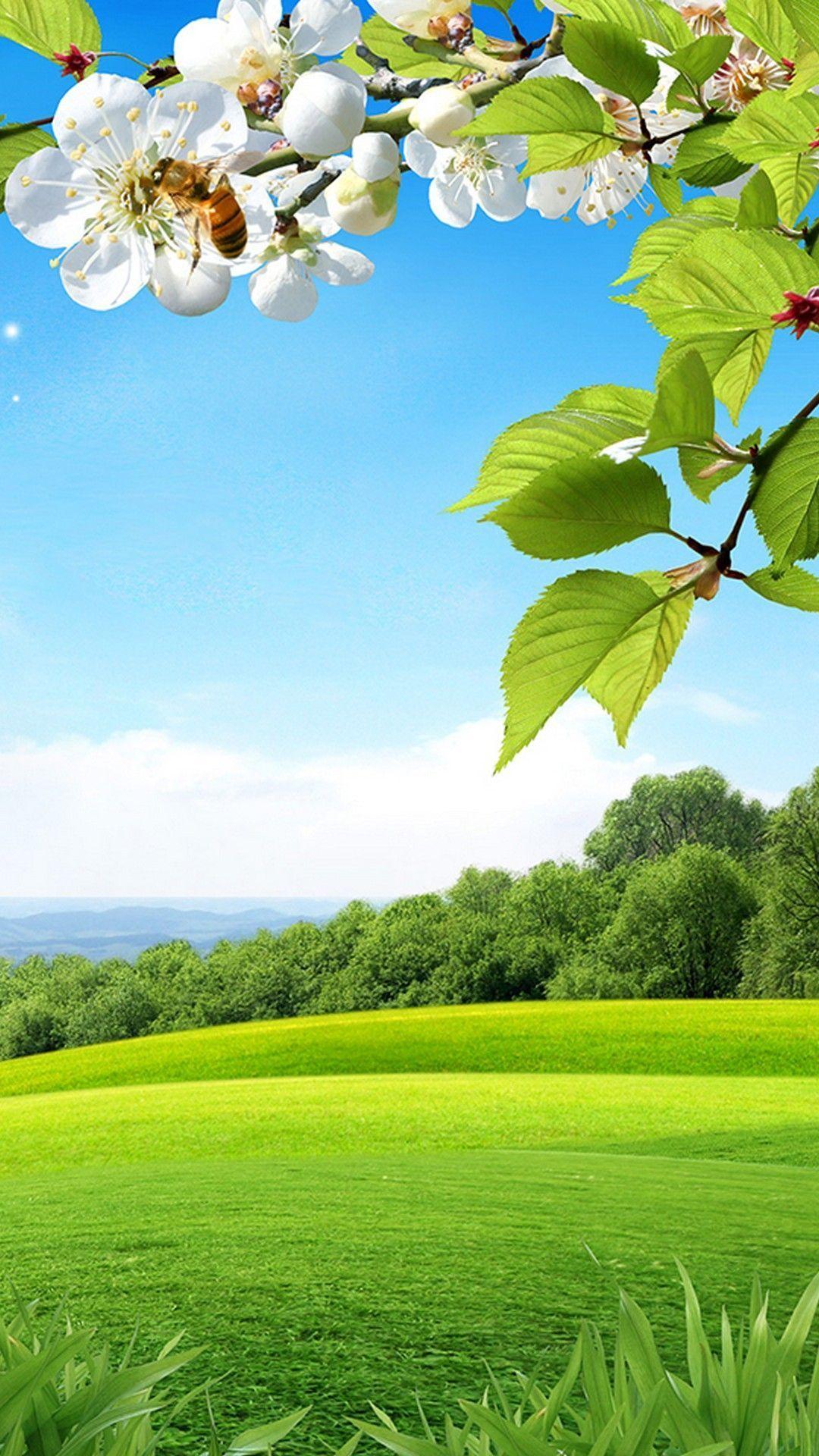 春の野原 風景の壁紙 Iphone 壁紙 水彩風景