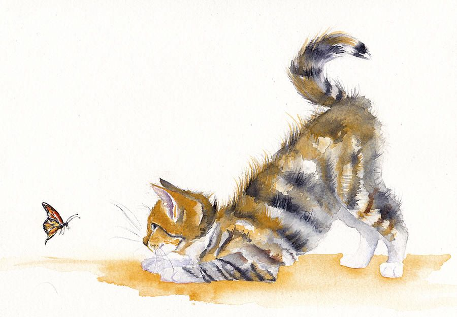 Butterfly Kitten In 2020 Watercolor Cat Kitten Drawing