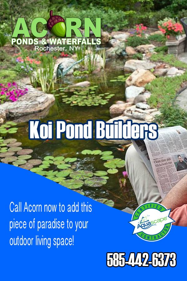 From New Ponds To Existing Ponds That Need A Facelift 400 x 300