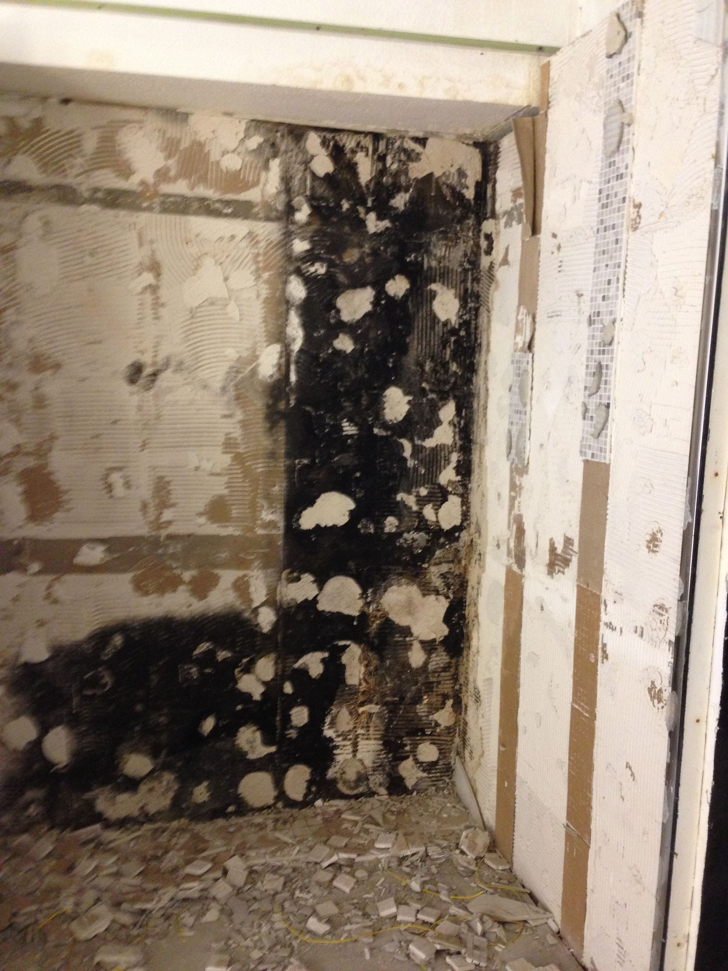 With The Last False Wall The Extent Of The Dry Rot And Damp
