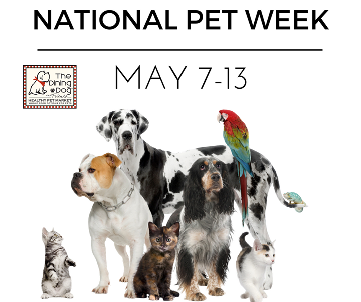 Come Celebrate All Week With Us For National Pet Week National