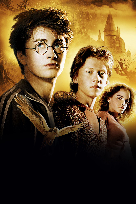 Harry Potter And The Prisoner Of Azkaban 3 Hp Harrypotter Prigioniero Di Azkaban Harry Potter Film Harry Potter