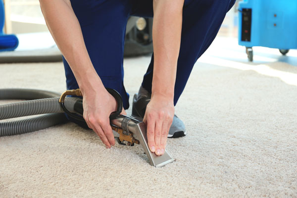 Carpet Dry Cleaners and Cleaning Services HIREtrades