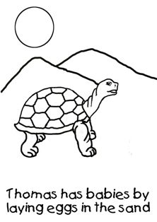 Free Fun Facts About Tortoises Coloring Pages From Our Fact Book Live In The Desert And Also On Islands