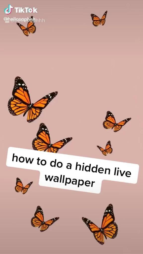 How To Make A Hidden Live Wallpaper Video Funny Phone Wallpaper Live Wallpaper Iphone Live Wallpapers