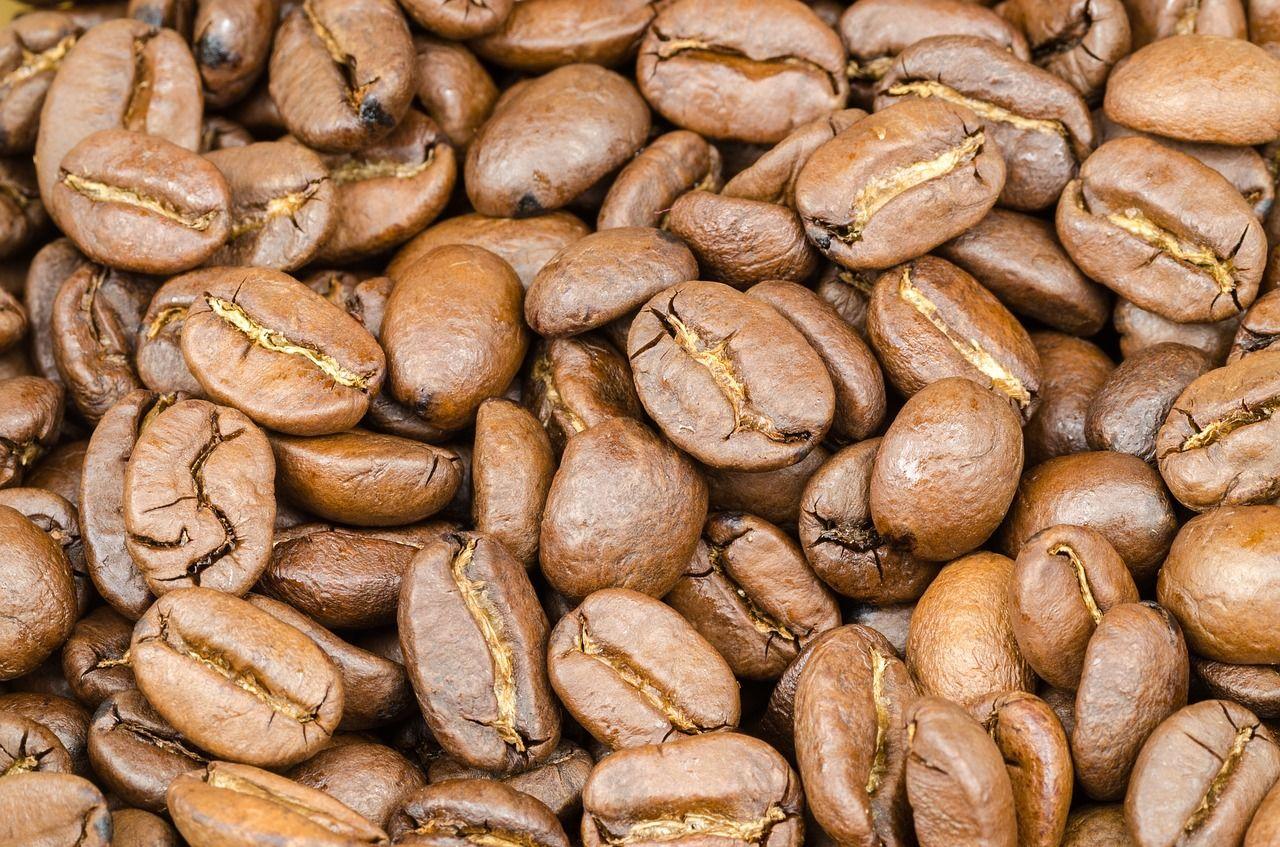 Coffee coffee brown caffeine seed coffee coffee