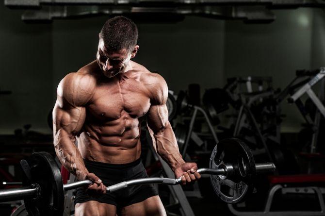How To Bulk Up Fast: Maximize The Muscle Building Process Motivación Para Acondicionamiento Físico, Gimnasio, Phil Heath, Culturismo, Arnold Schwarzenegger, Wider Hips Workout, Mr Olympia, Entrenamiento, Workout