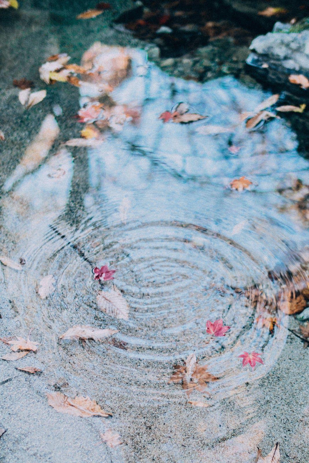 リフレクションを極めろ 雨上がりの空と水たまりと写真と Photoli