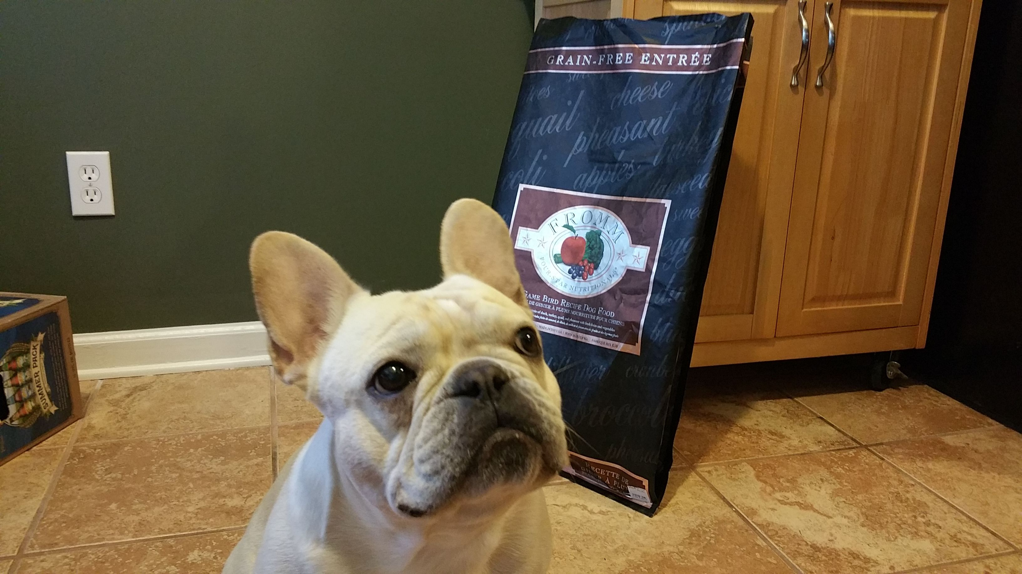 Best Food For French Bulldogs The Appropriate French Bulldog