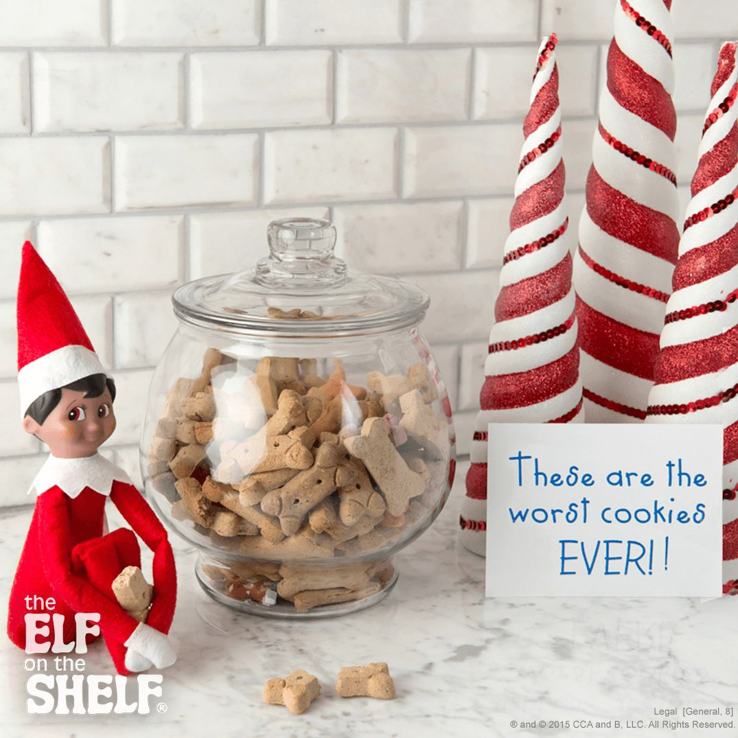 """Inspire your scout elf with The Elf on the Shelf® """"Scout Elf Ideas"""" app: http://bit.ly/ShareElfIdeas."""