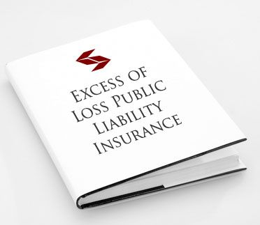 What is an Excess of Loss Public Liability Insurance ...