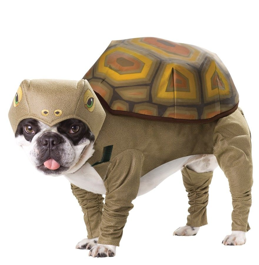 Animal  sc 1 st  Pinterest : puppy costumes for halloween  - Germanpascual.Com