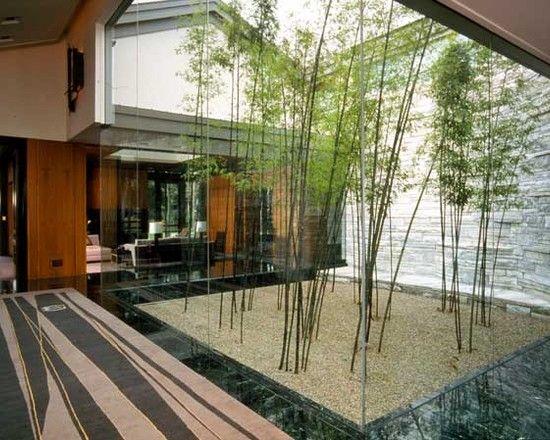 innenhof gestaltung glaswand kies pflanzen ideen glasdach ...