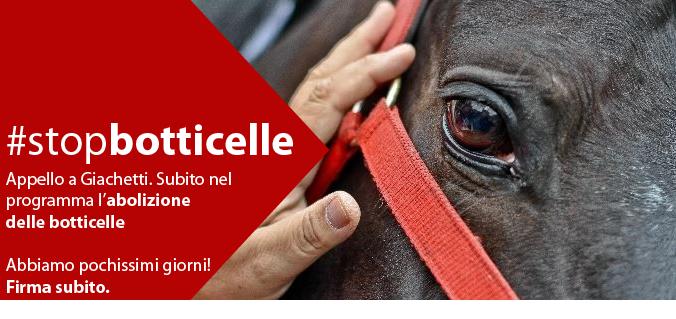 #stopbotticelle: appello a Giachetti. Subito nel programma l'abolizione delle botticelle