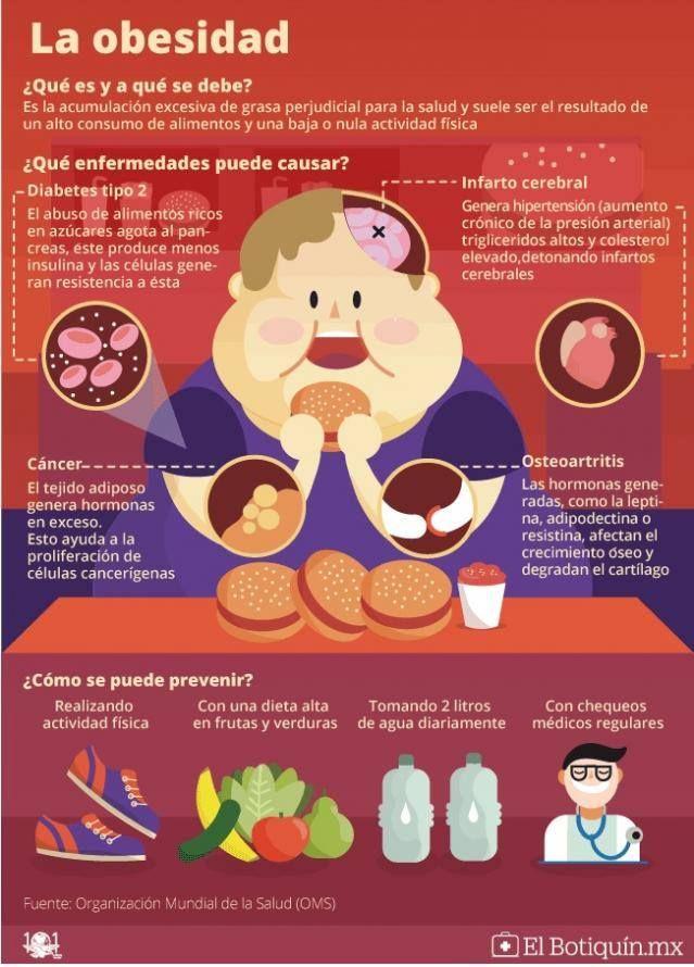 puede una dieta alta en grasas causar diabetes