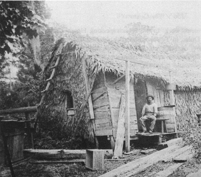 Palmetto Home Late 1890s Louisiana State Museum George