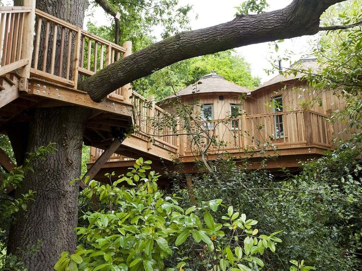 This Gorgeous Treehouse Is A Computer Printout Cool Tree Houses