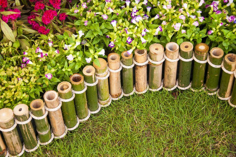 20 Inspirational Garden Flower Photos Bamboo Decor Bamboo