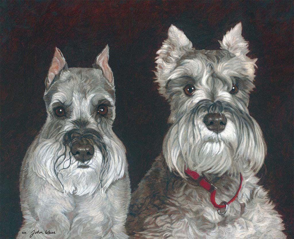 Lang Desktop Wallpaper | September 2015 | Love of Dogs ...