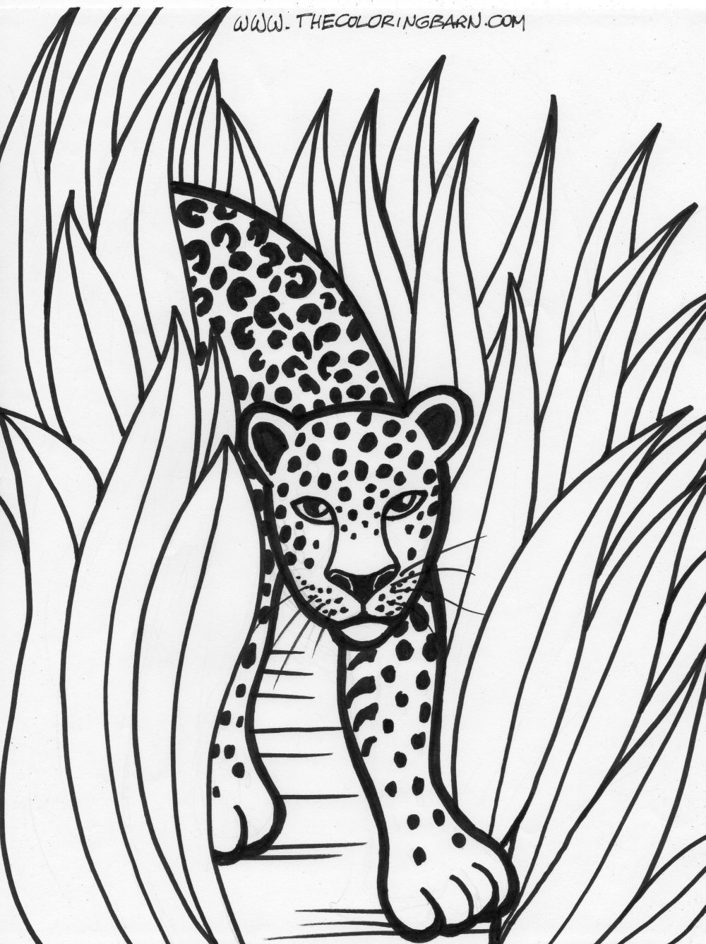 Printable coloring pages jungle animals - Rainforest Printable Coloring Pages The Coloring Barn Printable