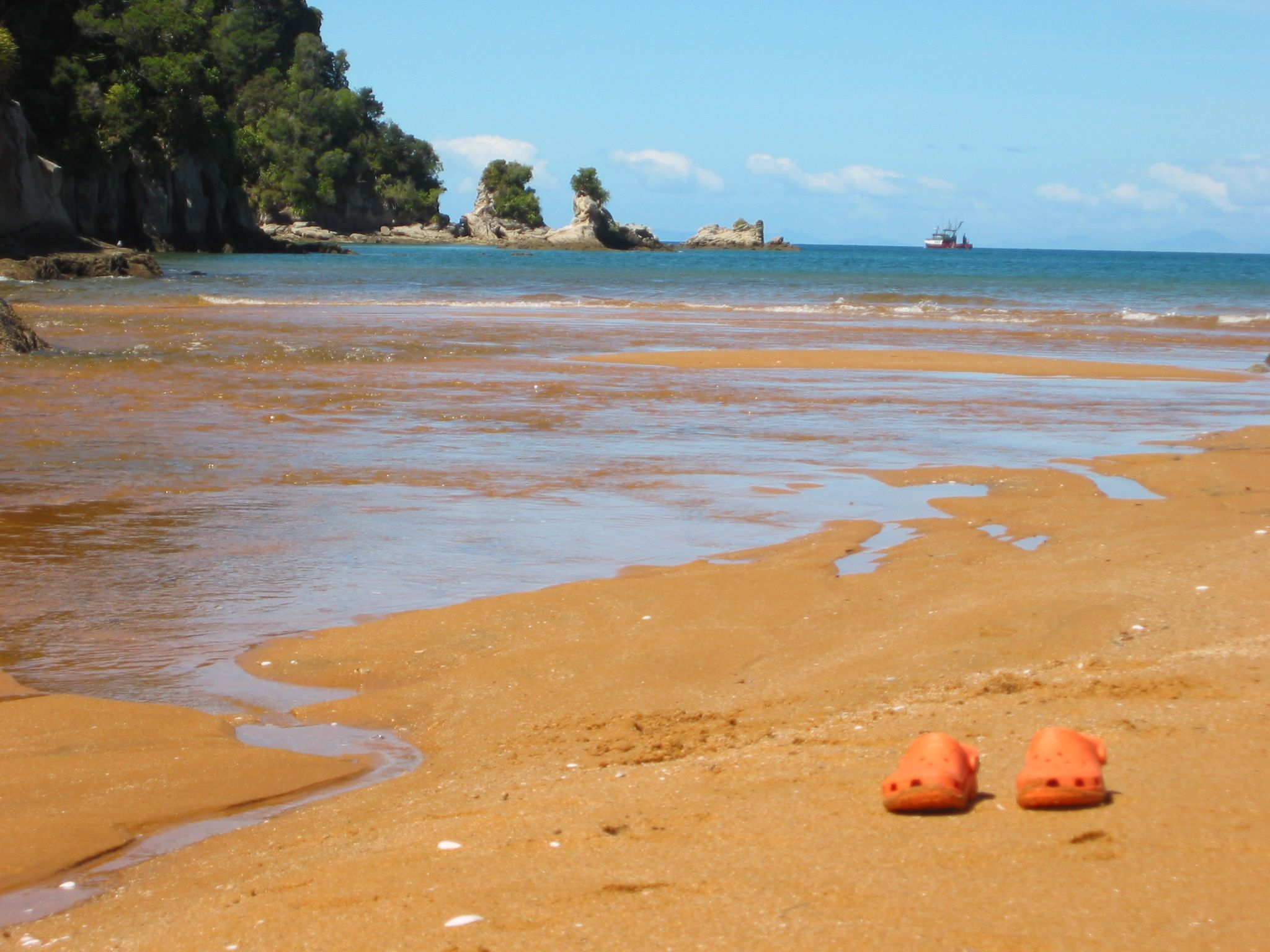 The estuary - these are the only kind of salt water crocs you'll find in NZ (Ozzies eat your eharts out!)