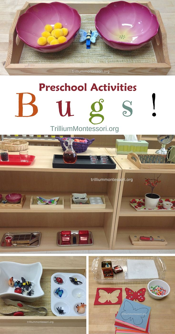 Preschool fine motor and art activities for a bugs unit