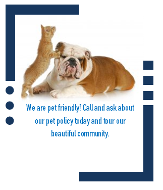 Tour Our Petfriendly Apartment Community Today Loudoun Apartments Pet Friendly Apartments Pets Pet Friendly