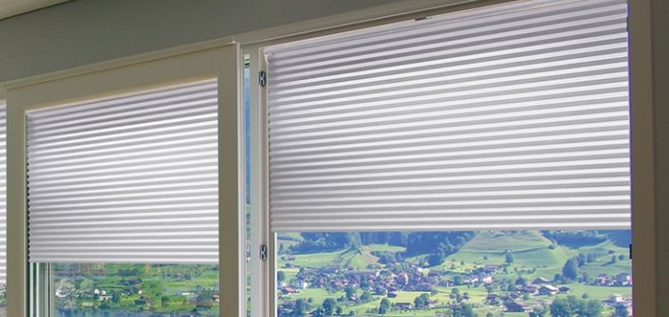 Classic Light Filtering Cordless Cellular Shades Cellular Shades Custom Blinds Honeycomb Shades