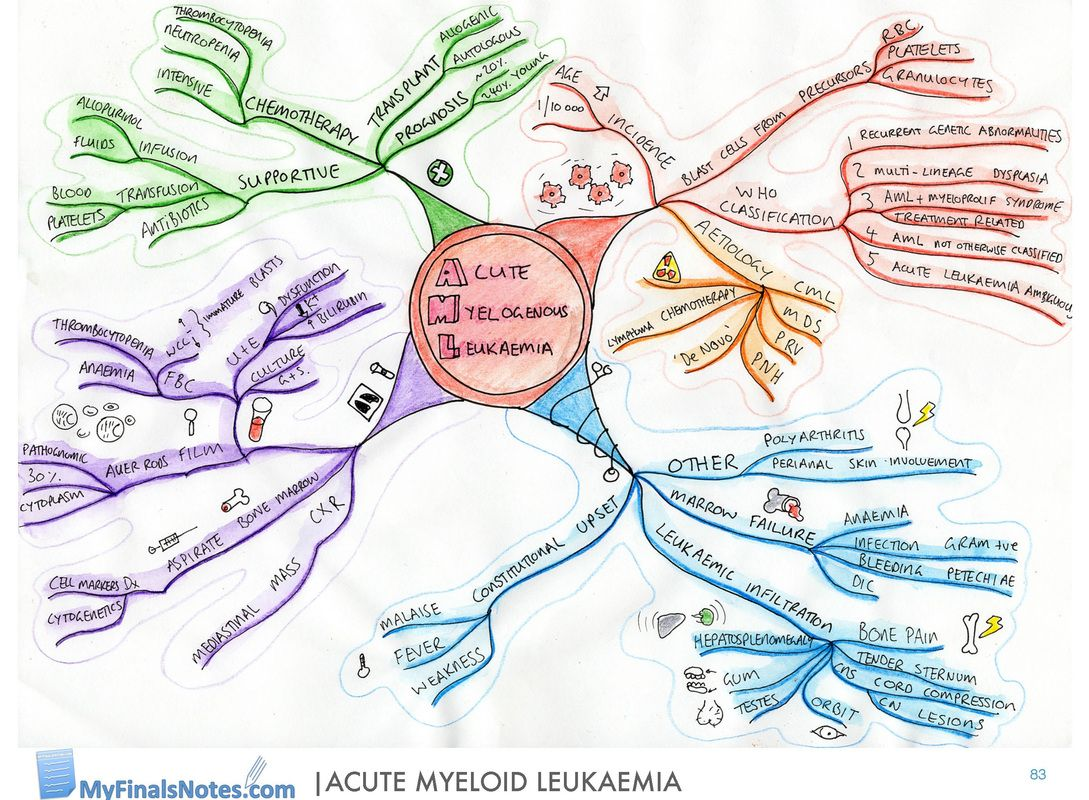 Acute Myeloid Leukaemia Mind Map Medical Student Revision Notes
