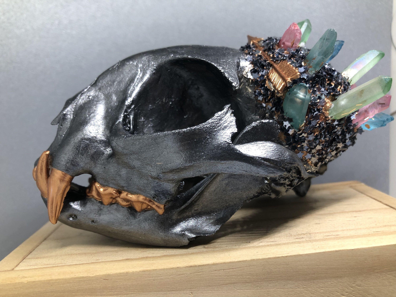 Crystallized Skull Steampunk* Taxidermy Animal Bones Javelina Skull Crystal Animal Skull Real Animal Skull Animal Skull *Animal