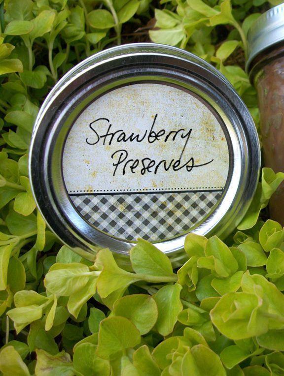 Vintage Fruit Canning Labels for home preserved jam