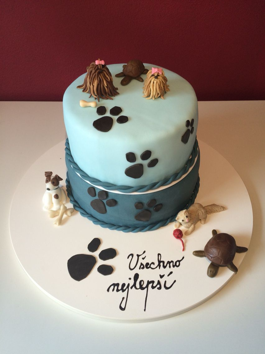 Dog cat veterinary cake Nelli baking My cakes Pinterest Cake