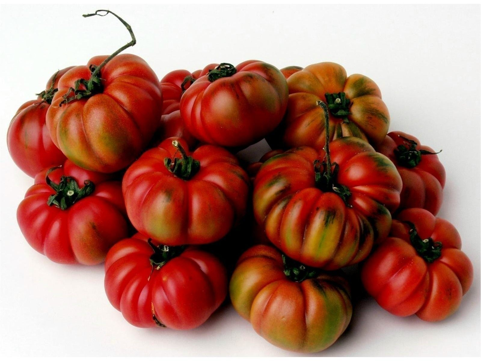 SAFTIG und FEIN! Samen Tomate Costoluto Genovese 10