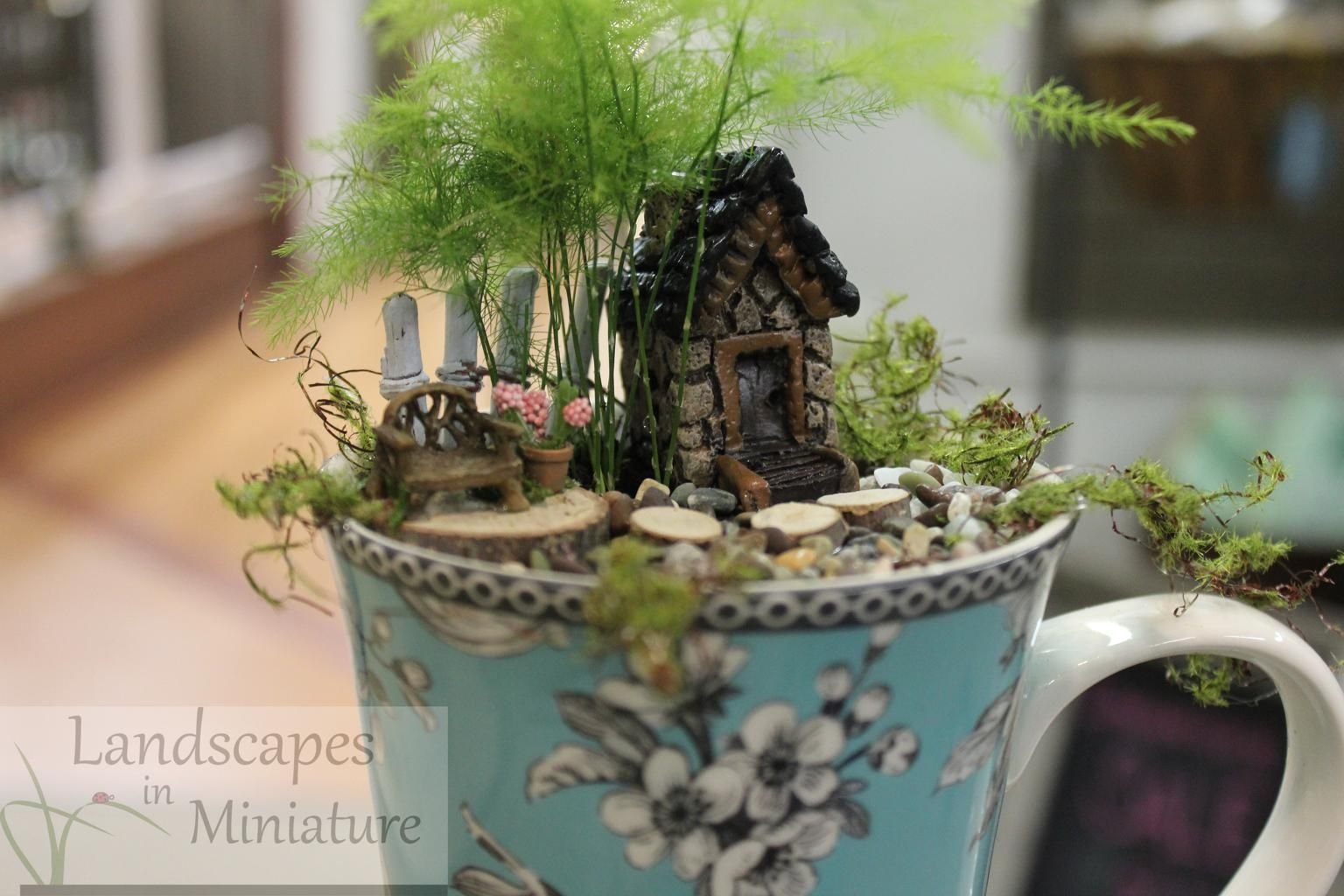 Tiny Cup Garden