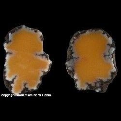 Minerals Specimen: Butterscotch Yellow Datolite from Mesnard Mine, Houghton Co., Michigan