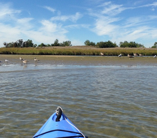 What Kayaking Will Teach You