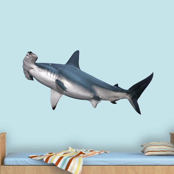 Hammerhead Shark Wall Decal Shark Wall Decor Realistic Shark