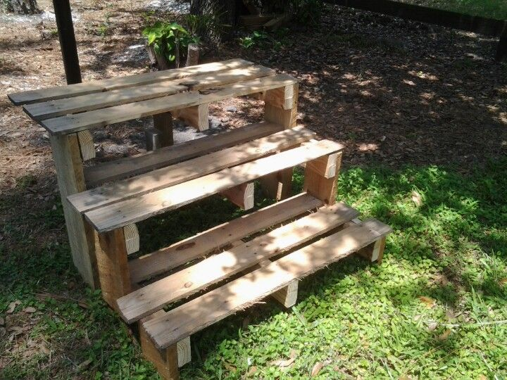 Pallet plant stand made it pinterest pallets for What to grow in a pallet garden