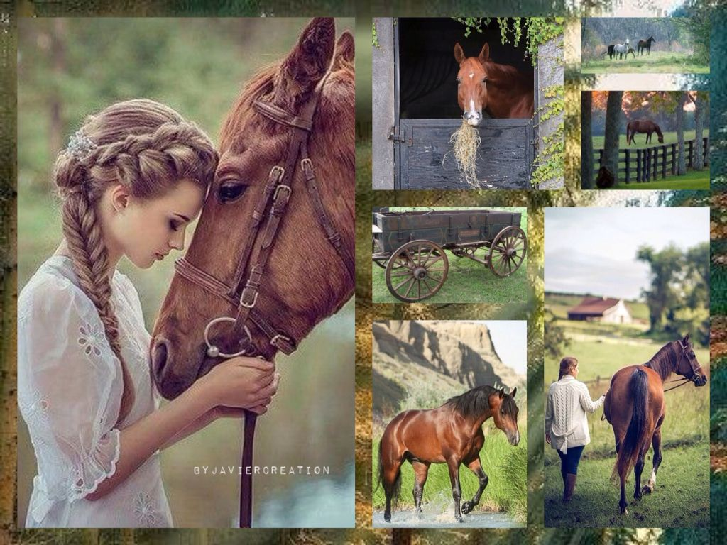 Schlafzimmerfarben My Love For Horse Javiercreation Creative Collages