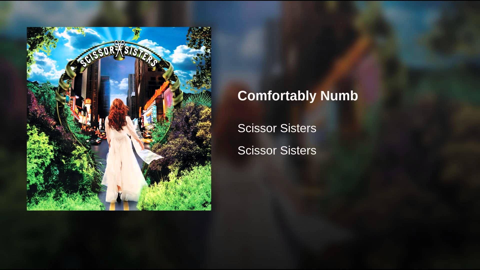 Scissor Sisters | Comfortably Numb | music | Scissor sisters