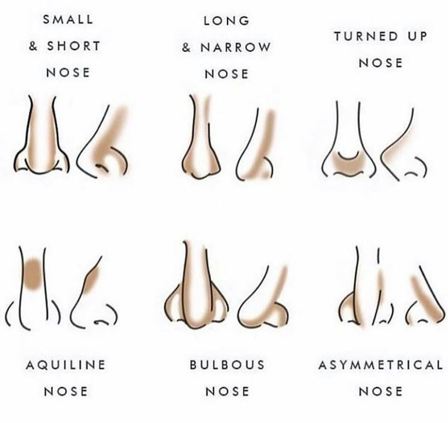 Nose Shapes Contouring | Color itt | Pinterest | Contours ...