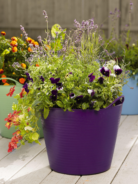 Self Watering Tubtrug Planter Gardener S Supply Company Self