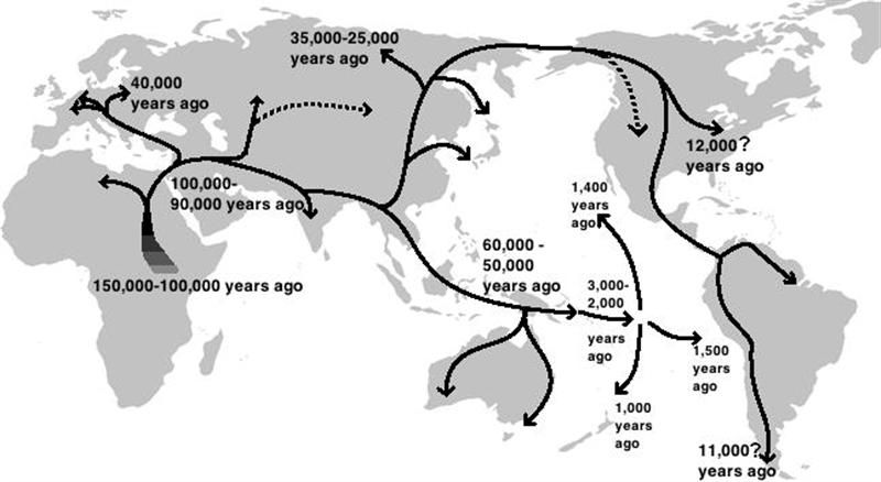 Map Of Human Migration | Maps of History | Ap human geography, Out
