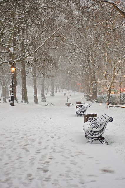 Green Park Snow by fish_fodder on Flickr.