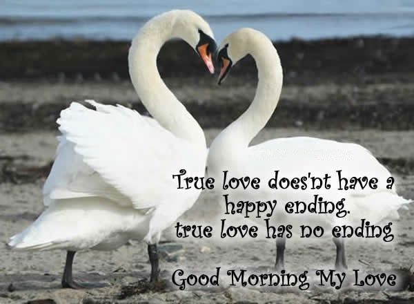 30 Good Morning Love Quotes For Him: 30+ Beautiful Good Morning Love Quotes For Her