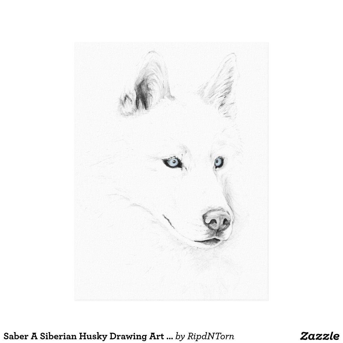 Saber A Siberian Husky Drawing Art Blue Eyes Canvas Print Zazzle